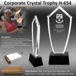 Corporate Gifting - Corporate Crystal Trophy - H - 654