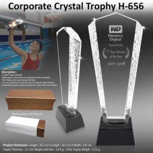 Corporate Gifting - Corporate Crystal Trophy - H - 656