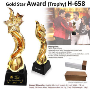 Corporate Gifting - Gold Star Award (Trophy) - H - 658