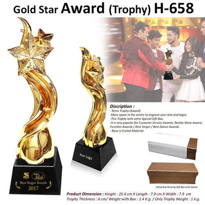 Gold Star Award (Trophy) H-658